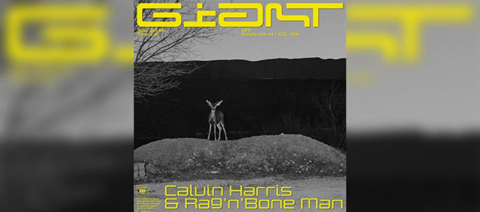 Calvin Harris - Giant (with Rag'n'Bone Man) | Best New Music