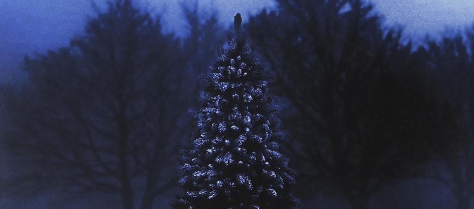 Kyan Palmer - Blue Christmas
