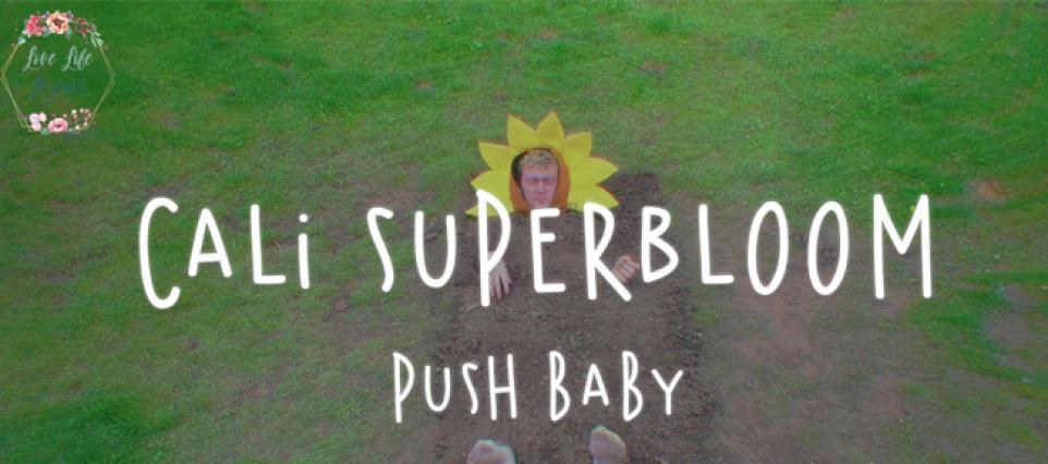 pushbaby - cali superbloom