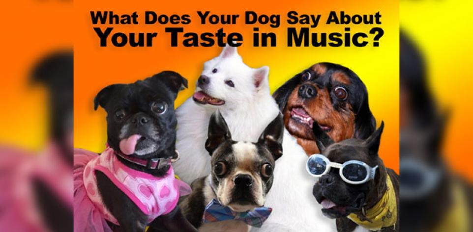 What Your Dog Says About Your Taste In Music