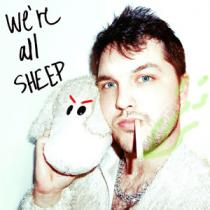 Low Cut High Tops - We're All Sheep